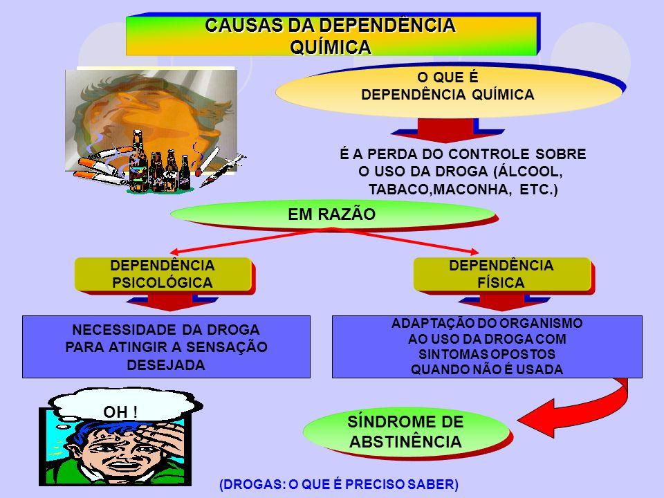 CAUSAS DA DEPENDÊNCIA QUÍMICA O QUE É DEPENDÊNCIA QUÍMICA É A PERDA DO CONTROLE SOBRE O USO DA DROGA (ÁLCOOL, TABACO,MACONHA, ETC.) EM RAZÃO DEPENDÊNC