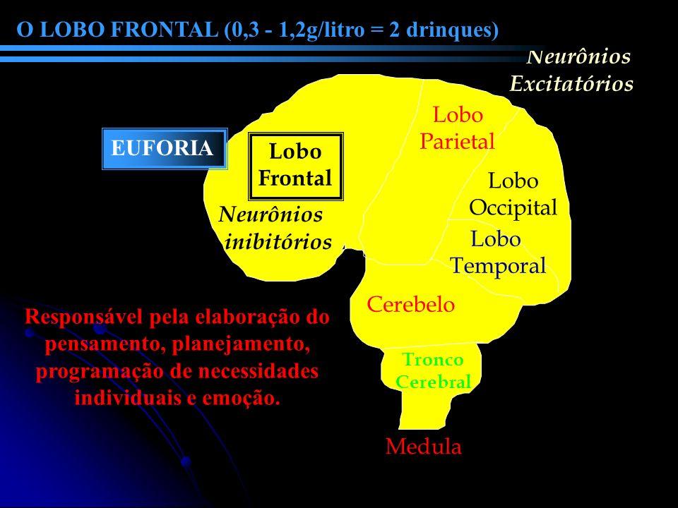 Lobo Frontal Cerebelo Lobo Parietal Lobo Occipital Lobo Temporal Neurônios inibitórios Neurônios Excitatórios O LOBO FRONTAL (0,3 - 1,2g/litro = 2 dri