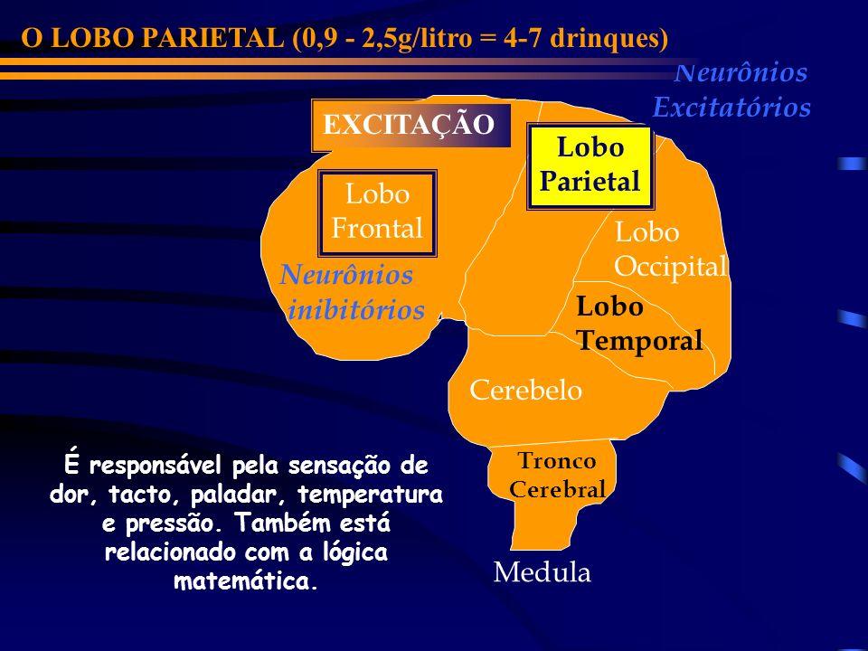 Lobo Frontal Cerebelo Lobo Parietal Lobo Occipital Lobo Temporal Neurônios inibitórios Neurônios Excitatórios O LOBO PARIETAL (0,9 - 2,5g/litro = 4-7