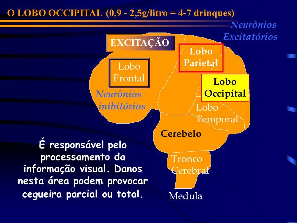Lobo Frontal Cerebelo Lobo Parietal Lobo Occipital Lobo Temporal Neurônios inibitórios Neurônios Excitatórios O LOBO OCCIPITAL (0,9 - 2,5g/litro = 4-7