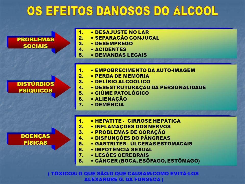 1. DESAJUSTE NO LAR 2. SEPARAÇÃO CONJUGAL 3. DESEMPREGO 4. ACIDENTES 5. DEMANDAS LEGAIS 1. EMPOBRECIMENTO DA AUTO-IMAGEM 2. PERDA DE MEMÓRIA 3. DELÍRI