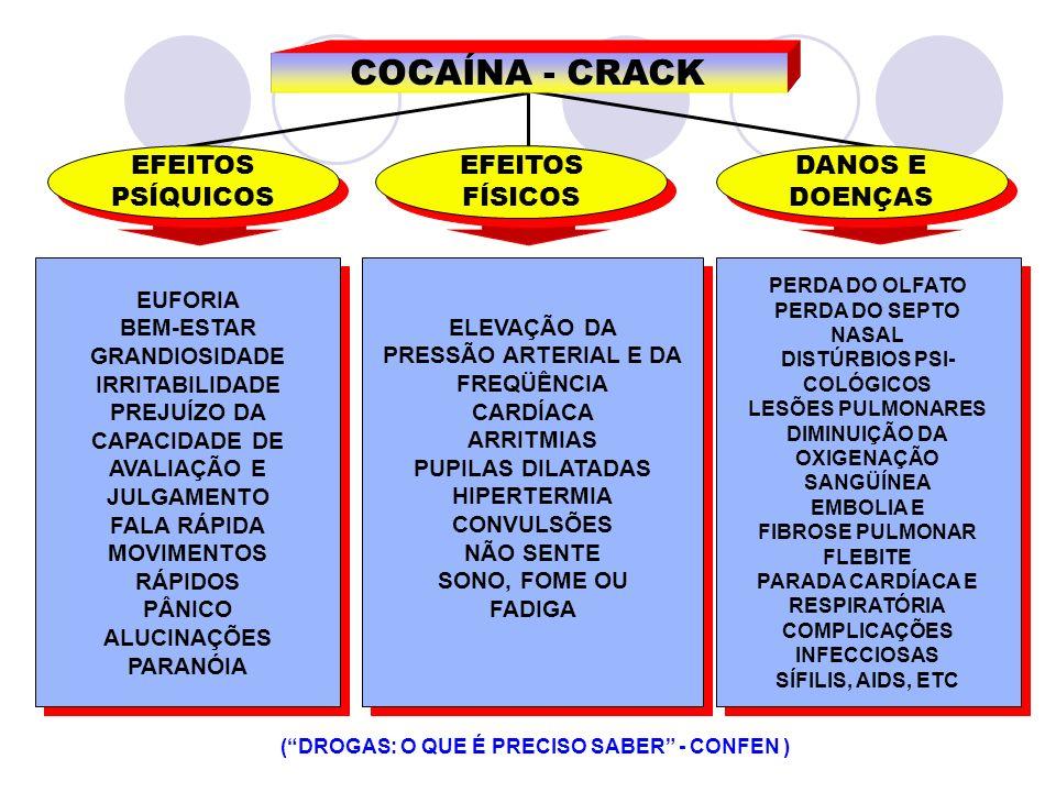 COCAÍNA - CRACK EFEITOS PSÍQUICOS EFEITOS PSÍQUICOS EFEITOS FÍSICOS EFEITOS FÍSICOS DANOS E DOENÇAS DANOS E DOENÇAS (DROGAS: O QUE É PRECISO SABER - C