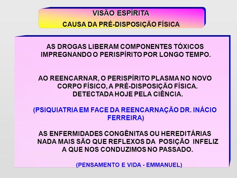 1.DESAJUSTE NO LAR 2. SEPARAÇÃO CONJUGAL 3. DESEMPREGO 4.