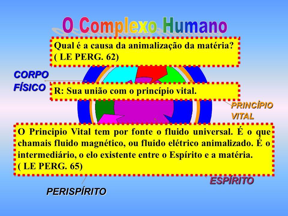 ESPÍRITO PERISPÍRITO PRINCÍPIOVITAL CORPOFÍSICO O Principio Vital tem por fonte o fluido universal.
