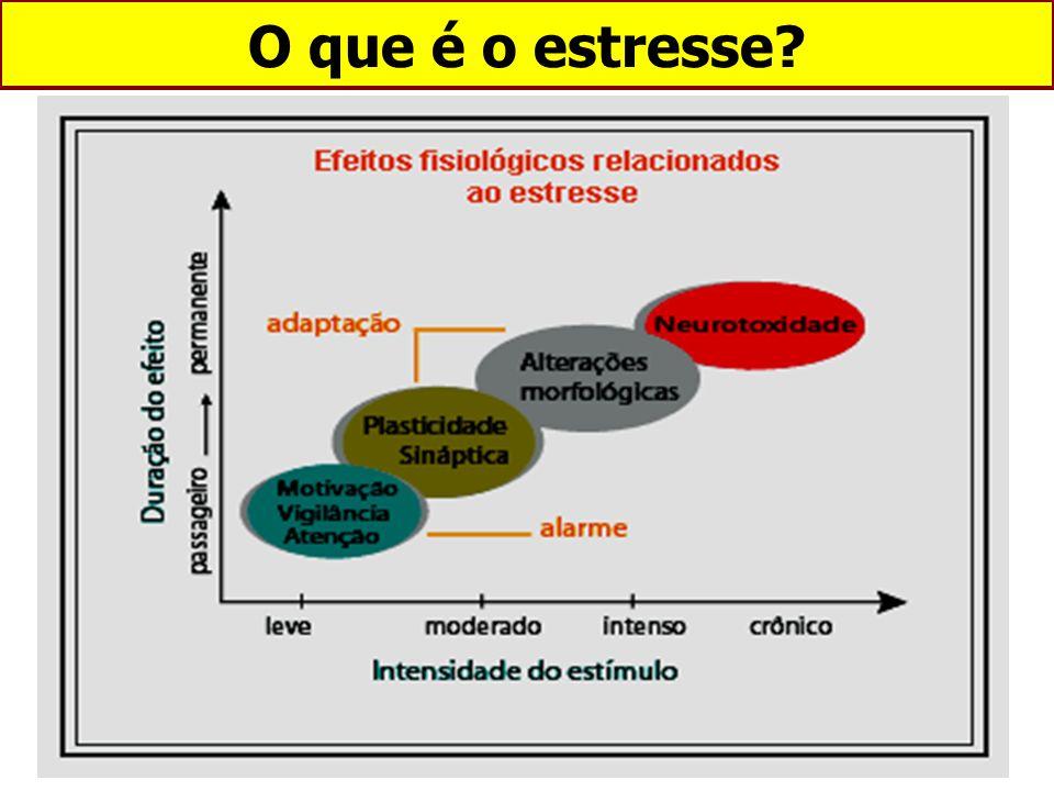 1 - Incerteza; 2 - Stress interpessoal; 3 - Falta de controle; 4 - Sobrecarga de trabalho; 5 - Administração do tempo.