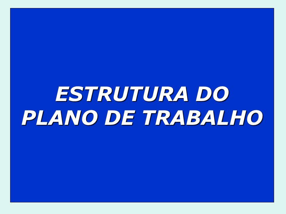 ESTRUTURA DO PLANO DE TRABALHO
