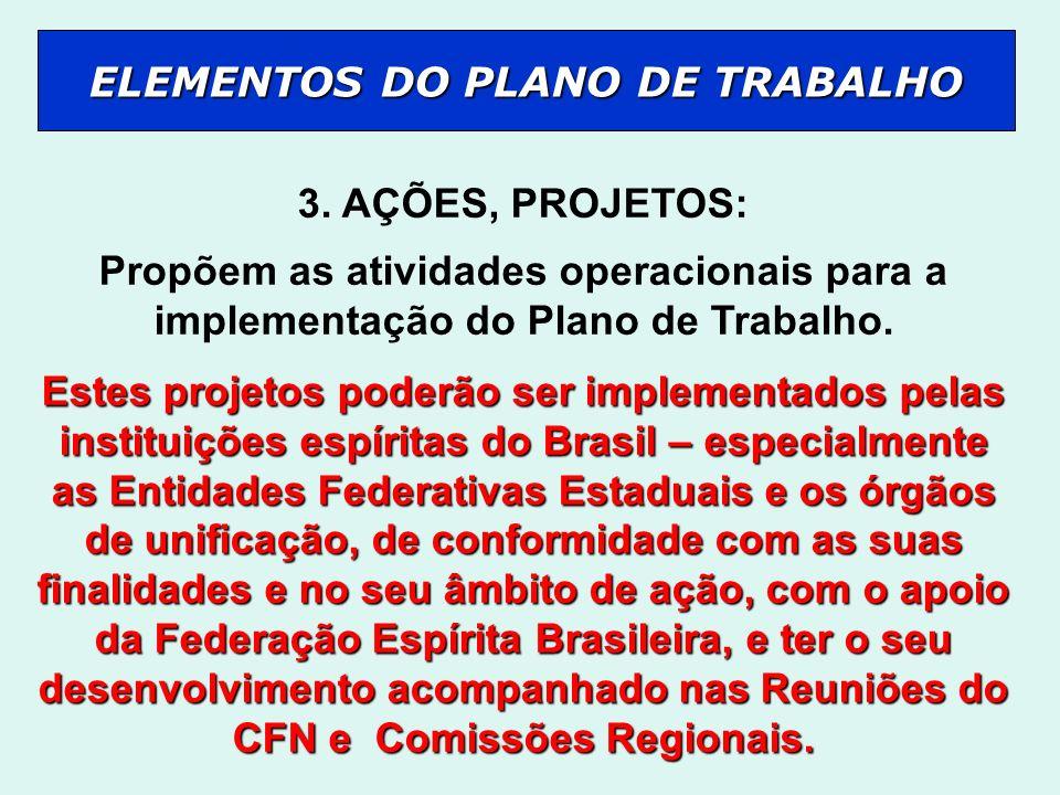 3. AÇÕES, PROJETOS: Propõem as atividades operacionais para a implementação do Plano de Trabalho. Estes projetos poderão ser implementados pelas insti