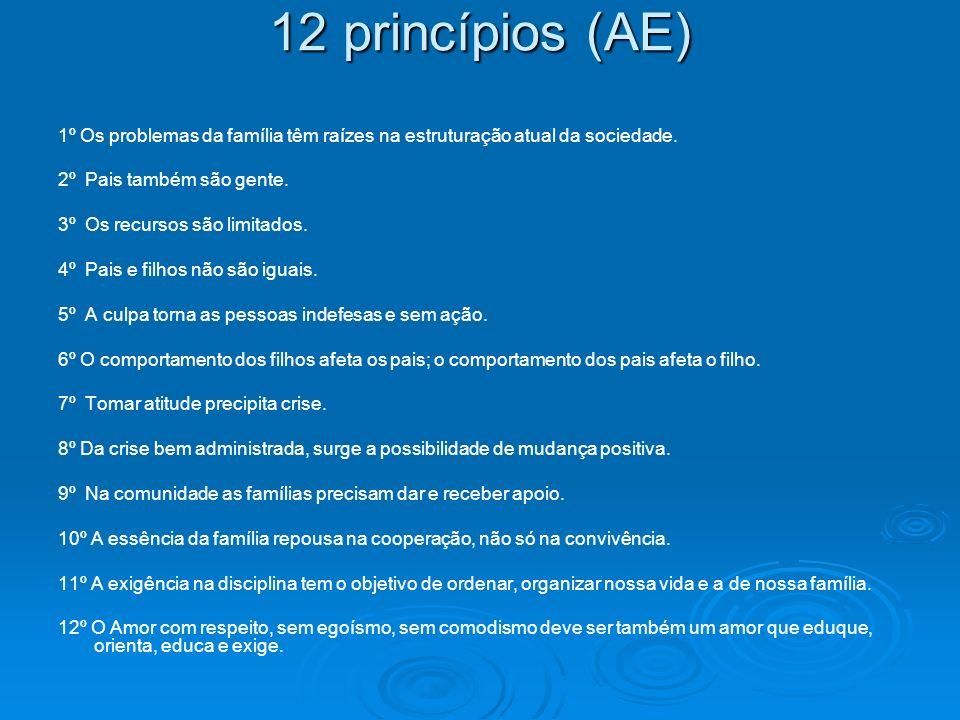 12 princípios (AE) 1º Os problemas da família têm raízes na estruturação atual da sociedade. 2º Pais também são gente. 3º Os recursos são limitados. 4
