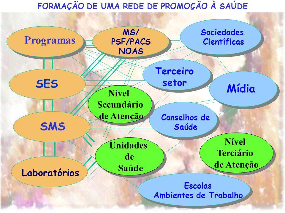 SES SMS Laboratórios MS/ PSF/PACS NOAS Escolas Ambientes de Trabalho Terceiro setor Mídia Sociedades Científicas Conselhos de Saúde FORMAÇÃO DE UMA RE