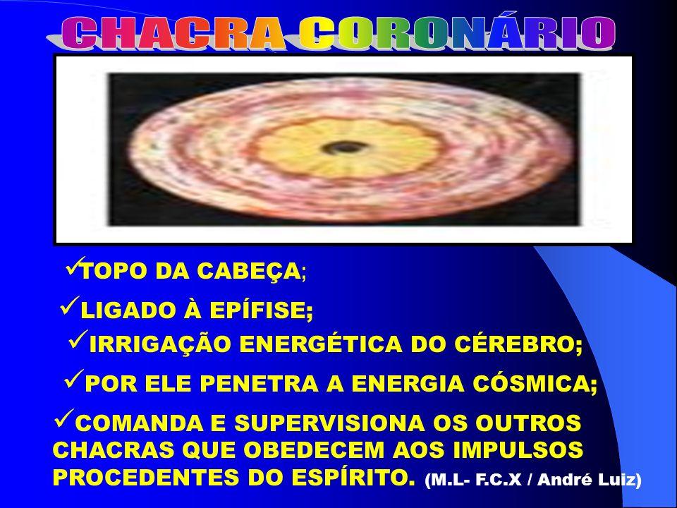 T OPO DA CABEÇA ; L IGADO À EPÍFISE; I RRIGAÇÃO ENERGÉTICA DO CÉREBRO; P OR ELE PENETRA A ENERGIA CÓSMICA; C OMANDA E SUPERVISIONA OS OUTROS CHACRAS Q