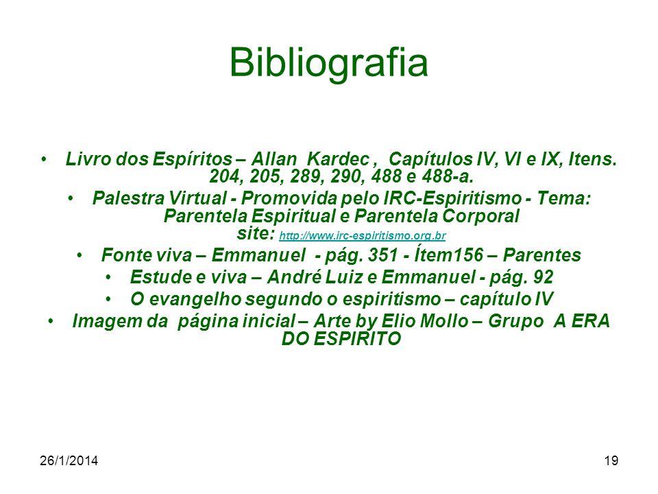 26/1/201419 Bibliografia Livro dos Espíritos – Allan Kardec, Capítulos IV, VI e IX, Itens. 204, 205, 289, 290, 488 e 488-a. Palestra Virtual - Promovi