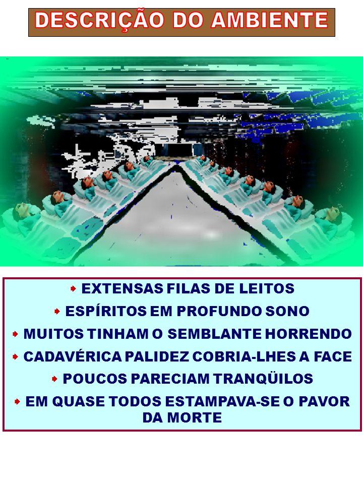 EXTENSAS FILAS DE LEITOS ESPÍRITOS EM PROFUNDO SONO MUITOS TINHAM O SEMBLANTE HORRENDO CADAVÉRICA PALIDEZ COBRIA-LHES A FACE POUCOS PARECIAM TRANQÜILO