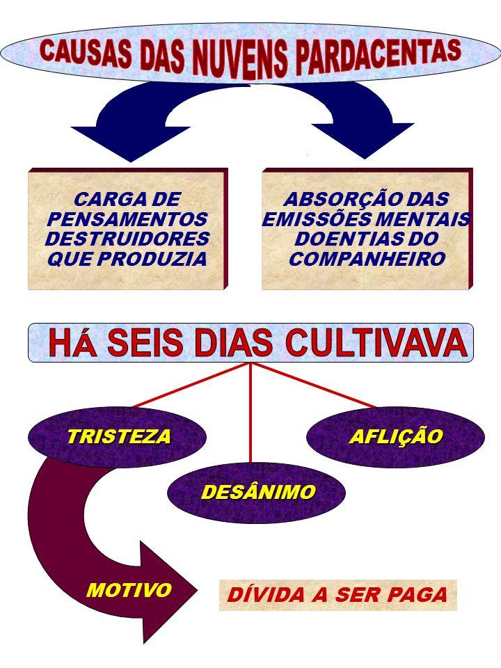 ABSORÇÃO DAS EMISSÕES MENTAIS DOENTIAS DO COMPANHEIRO CARGA DE PENSAMENTOS DESTRUIDORES QUE PRODUZIA TRISTEZA DESÂNIMO AFLIÇÃO DÍVIDA A SER PAGA MOTIV