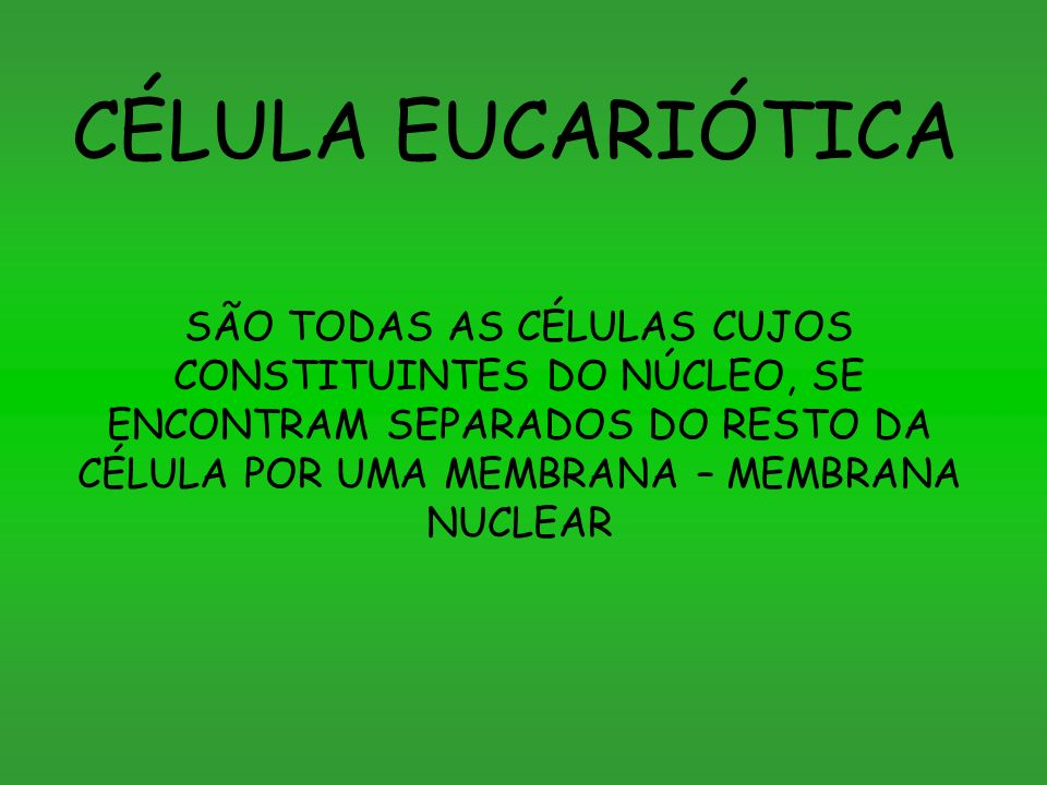 CÉLULA EUCARIÓTICA SÃO TODAS AS CÉLULAS CUJOS CONSTITUINTES DO NÚCLEO, SE ENCONTRAM SEPARADOS DO RESTO DA CÉLULA POR UMA MEMBRANA – MEMBRANA NUCLEAR