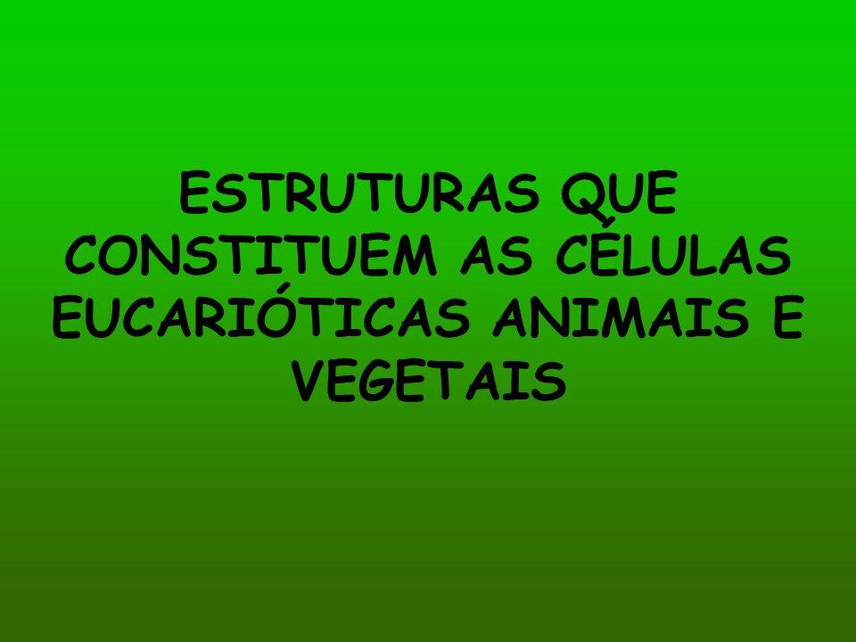 ESTRUTURAS QUE CONSTITUEM AS CÉLULAS EUCARIÓTICAS ANIMAIS E VEGETAIS