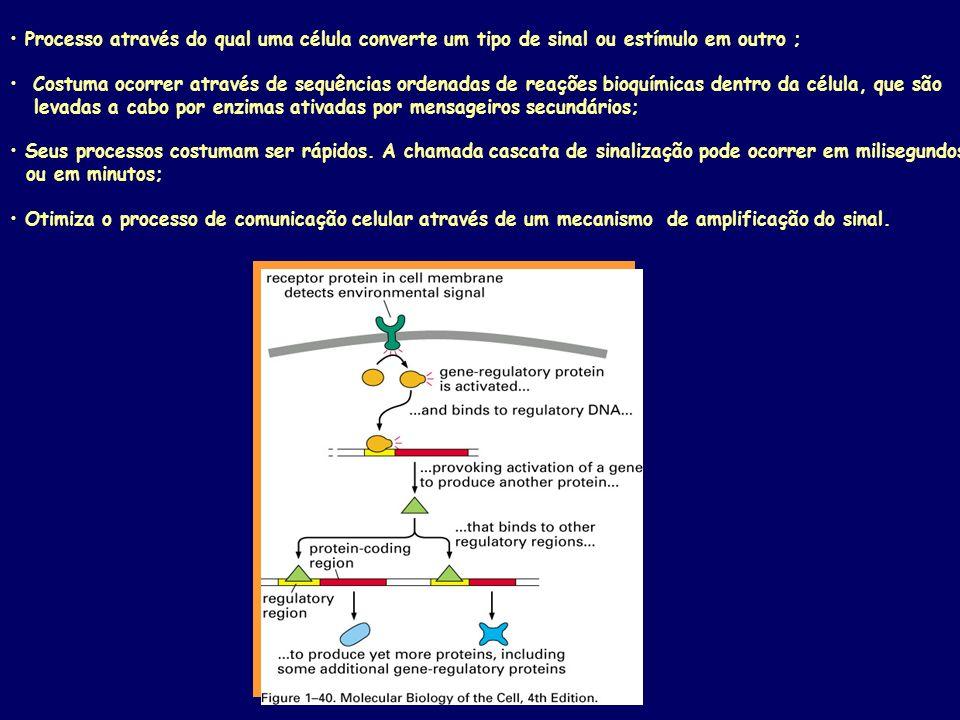 Processo através do qual uma célula converte um tipo de sinal ou estímulo em outro ; Costuma ocorrer através de sequências ordenadas de reações bioquímicas dentro da célula, que são levadas a cabo por enzimas ativadas por mensageiros secundários; Seus processos costumam ser rápidos.