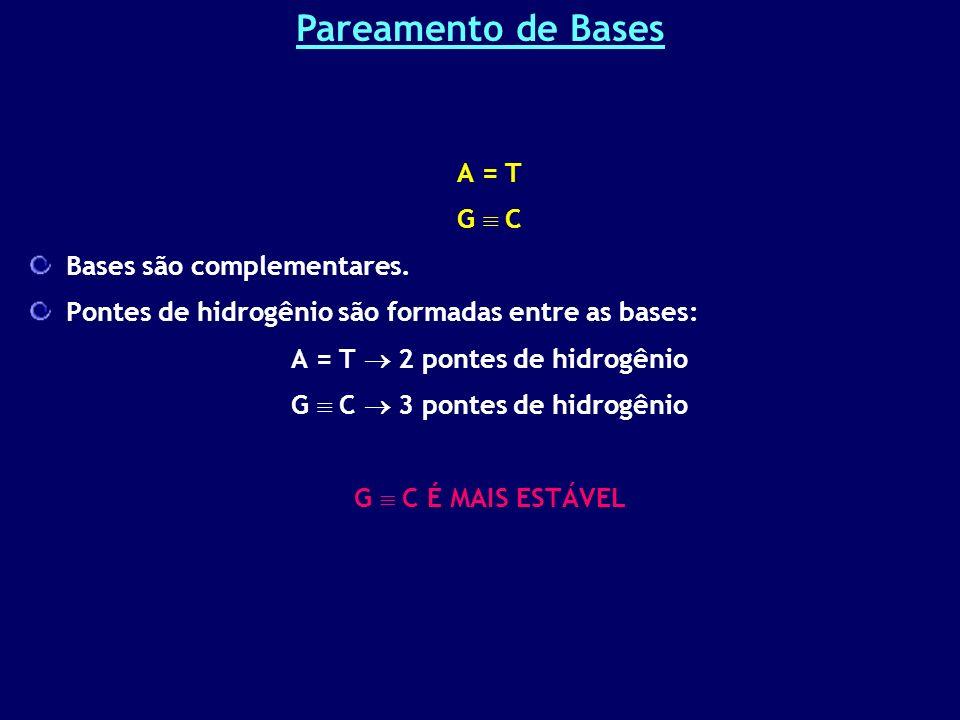 A = T G C Bases são complementares. Pontes de hidrogênio são formadas entre as bases: A = T 2 pontes de hidrogênio G C 3 pontes de hidrogênio G C É MA
