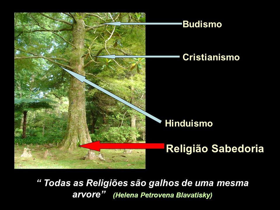 Religião Sabedoria Cristianismo Budismo Hinduismo Todas as Religiões são galhos de uma mesma arvore (Helena Petrovena Blavatisky)