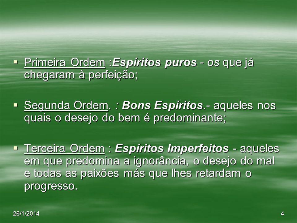 26/1/20144 Primeira Ordem :Espíritos puros - os que já chegaram à perfeição; Primeira Ordem :Espíritos puros - os que já chegaram à perfeição; Segunda