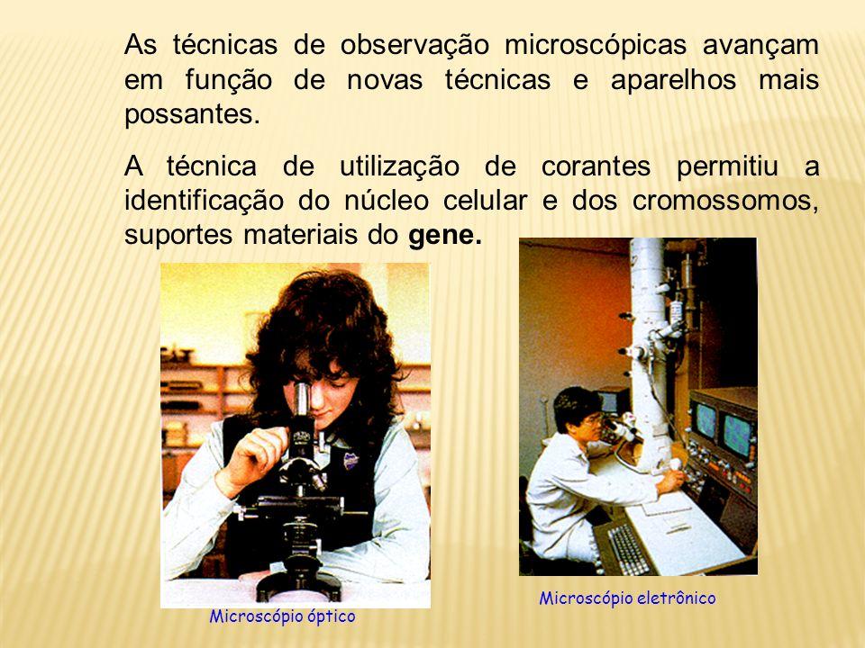 As técnicas de observação microscópicas avançam em função de novas técnicas e aparelhos mais possantes. A técnica de utilização de corantes permitiu a