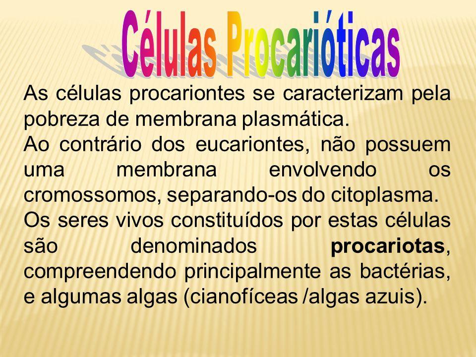 As células procariontes se caracterizam pela pobreza de membrana plasmática. Ao contrário dos eucariontes, não possuem uma membrana envolvendo os crom