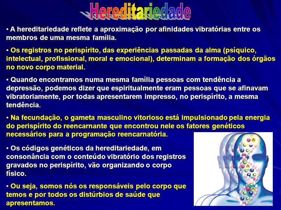 A hereditariedade reflete a aproximação por afinidades vibratórias entre os membros de uma mesma família. A hereditariedade reflete a aproximação por