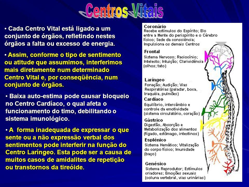 Cada Centro Vital está ligado a um conjunto de órgãos, refletindo nestes órgãos a falta ou excesso de energia. Cada Centro Vital está ligado a um conj
