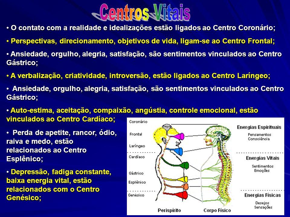 O contato com a realidade e idealizações estão ligados ao Centro Coronário; O contato com a realidade e idealizações estão ligados ao Centro Coronário