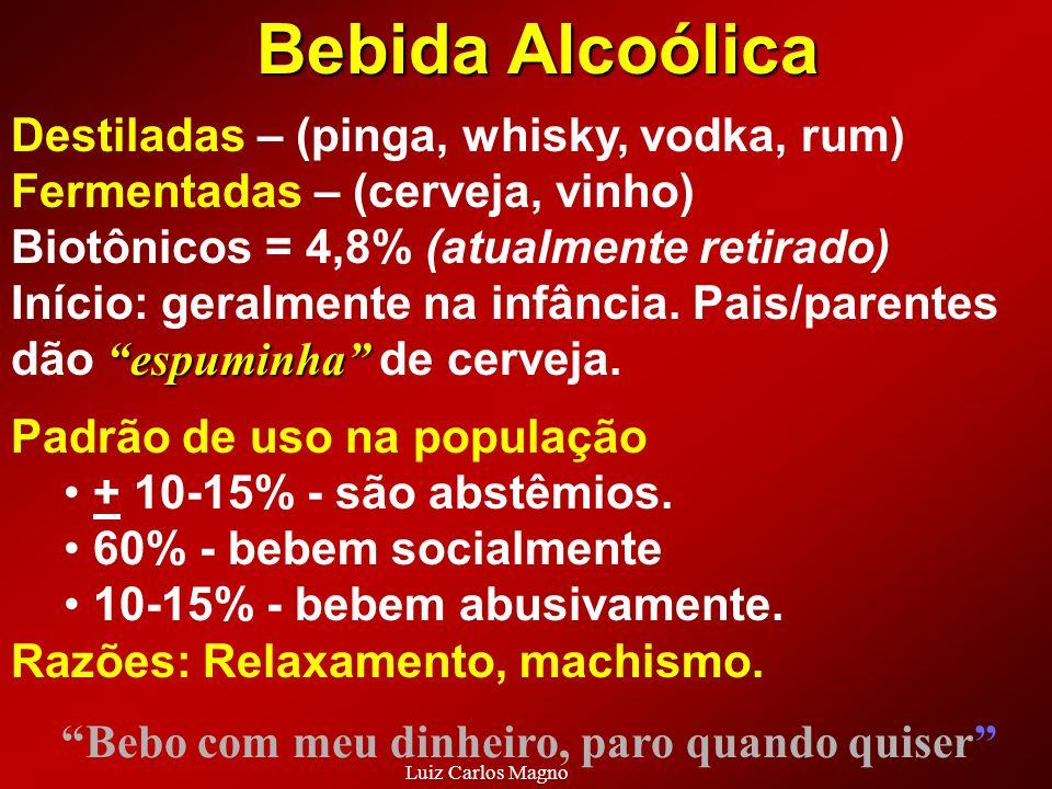 Destiladas – (pinga, whisky, vodka, rum) Fermentadas – (cerveja, vinho) Biotônicos = 4,8% (atualmente retirado) espuminha Início: geralmente na infânc