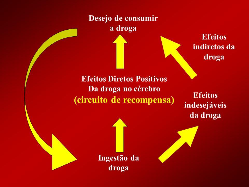 Desejo de consumir a droga Efeitos Diretos Positivos Da droga no cérebro (circuito de recompensa) Ingestão da droga Efeitos indiretos da droga Efeitos