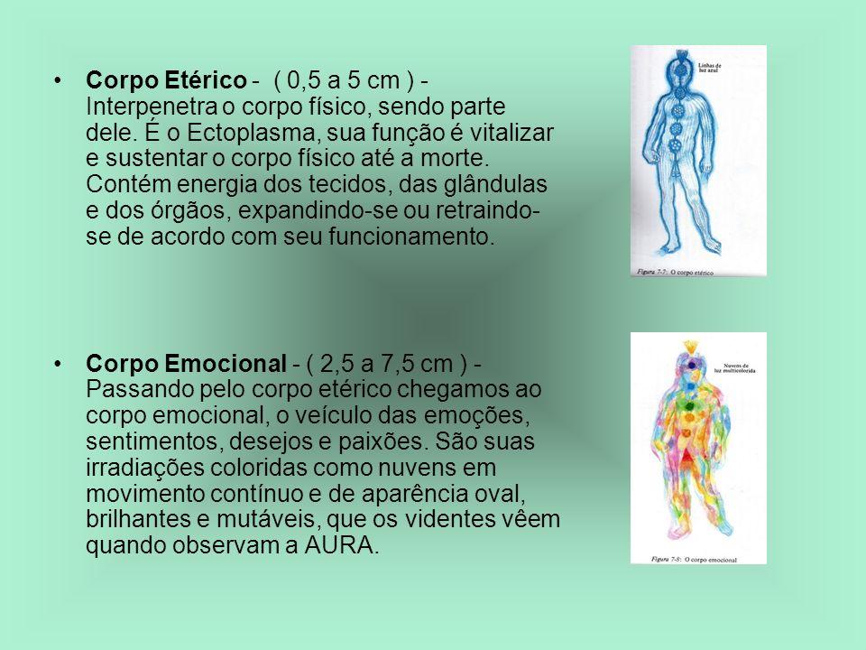 Corpo Etérico - ( 0,5 a 5 cm ) - Interpenetra o corpo físico, sendo parte dele. É o Ectoplasma, sua função é vitalizar e sustentar o corpo físico até