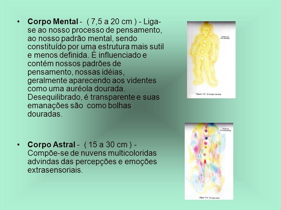 Corpo Mental - ( 7,5 a 20 cm ) - Liga- se ao nosso processo de pensamento, ao nosso padrão mental, sendo constituído por uma estrutura mais sutil e me