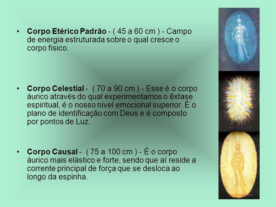 Corpo Etérico Padrão - ( 45 a 60 cm ) - Campo de energia estruturada sobre o qual cresce o corpo físico. Corpo Celestial - ( 70 a 90 cm ) - Esse é o c