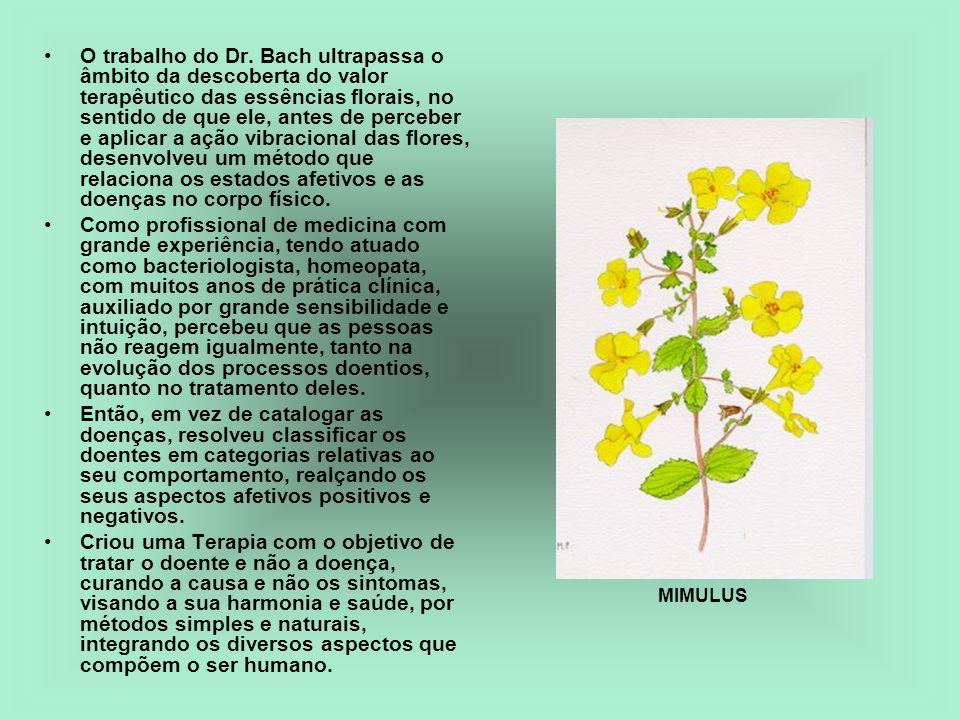 O trabalho do Dr. Bach ultrapassa o âmbito da descoberta do valor terapêutico das essências florais, no sentido de que ele, antes de perceber e aplica