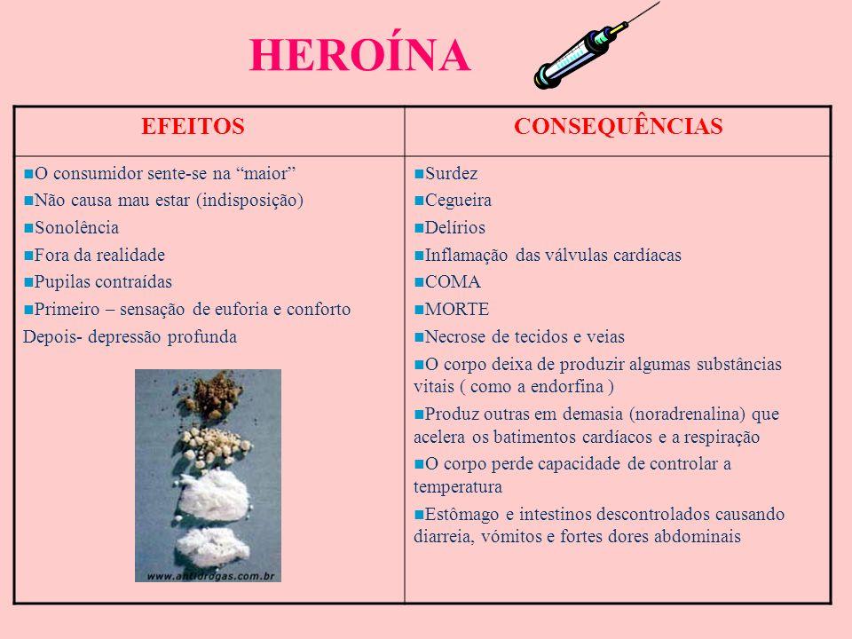 HEROÍNA A heroína é uma variação da morfina que por sua vez é uma variação do ópio obtida da papoila (ópio) O ópio começou por ser usado (venda livre)