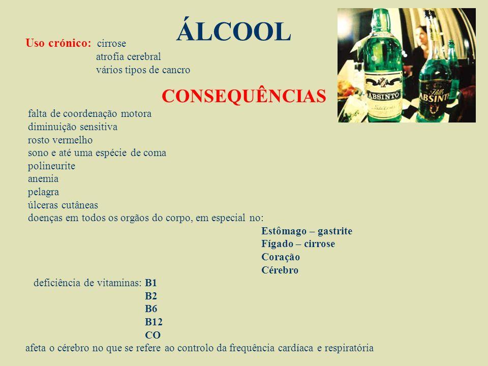 ÁLCOOL Álcool – do árabe AL-KUHUL que significa LÍQUIDO As bebidas alcoólicas representam as drogas mais antigas. É obtido pela fermentação,ou destila
