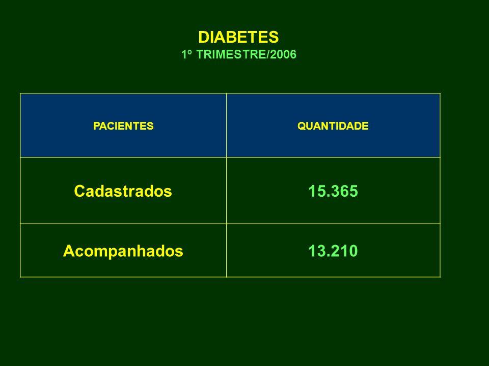 PACIENTESQUANTIDADE Cadastrados15.365 Acompanhados13.210 DIABETES 1º TRIMESTRE/2006