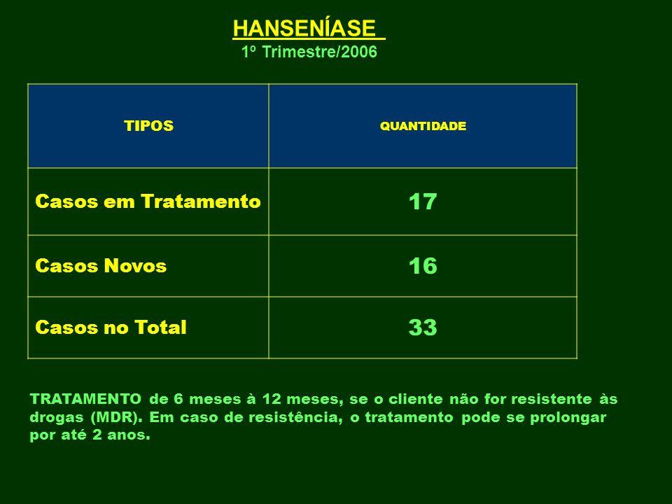 TIPOS QUANTIDADE Casos em Tratamento 17 Casos Novos 16 Casos no Total 33 HANSENÍASE 1º Trimestre/2006