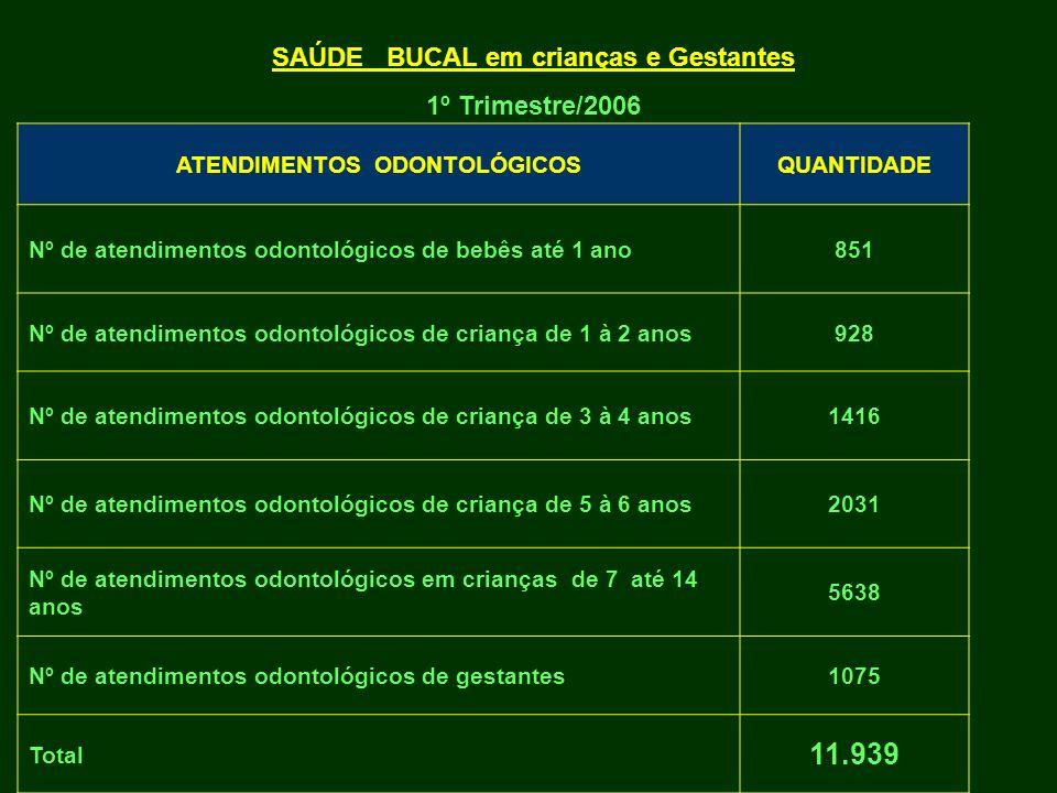 ATENDIMENTOS ODONTOLÓGICOSQUANTIDADE Nº de atendimentos odontológicos de bebês até 1 ano851 Nº de atendimentos odontológicos de criança de 1 à 2 anos9