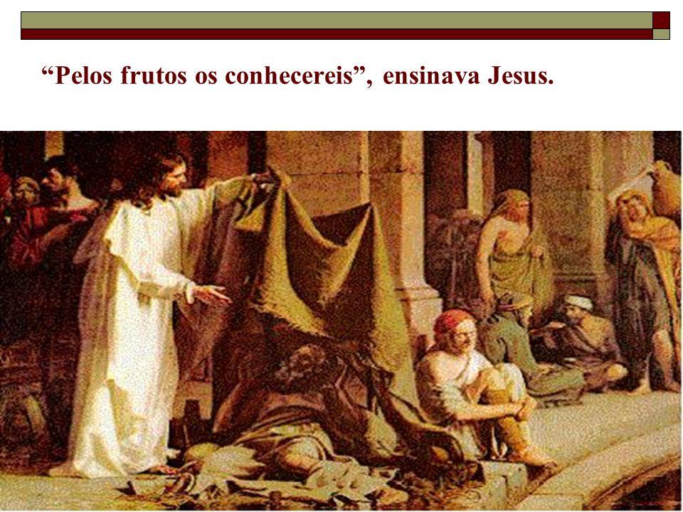 3 Pelos frutos os conhecereis, ensinava Jesus.
