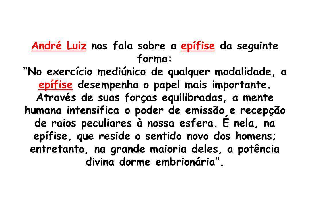 André Luiz nos fala sobre a epífise da seguinte forma: No exercício mediúnico de qualquer modalidade, a epífise desempenha o papel mais importante. At