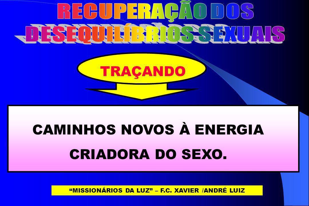 TRAÇANDO CAMINHOS NOVOS À ENERGIA CRIADORA DO SEXO. MISSIONÁRIOS DA LUZ – F.C. XAVIER /ANDRÉ LUIZ