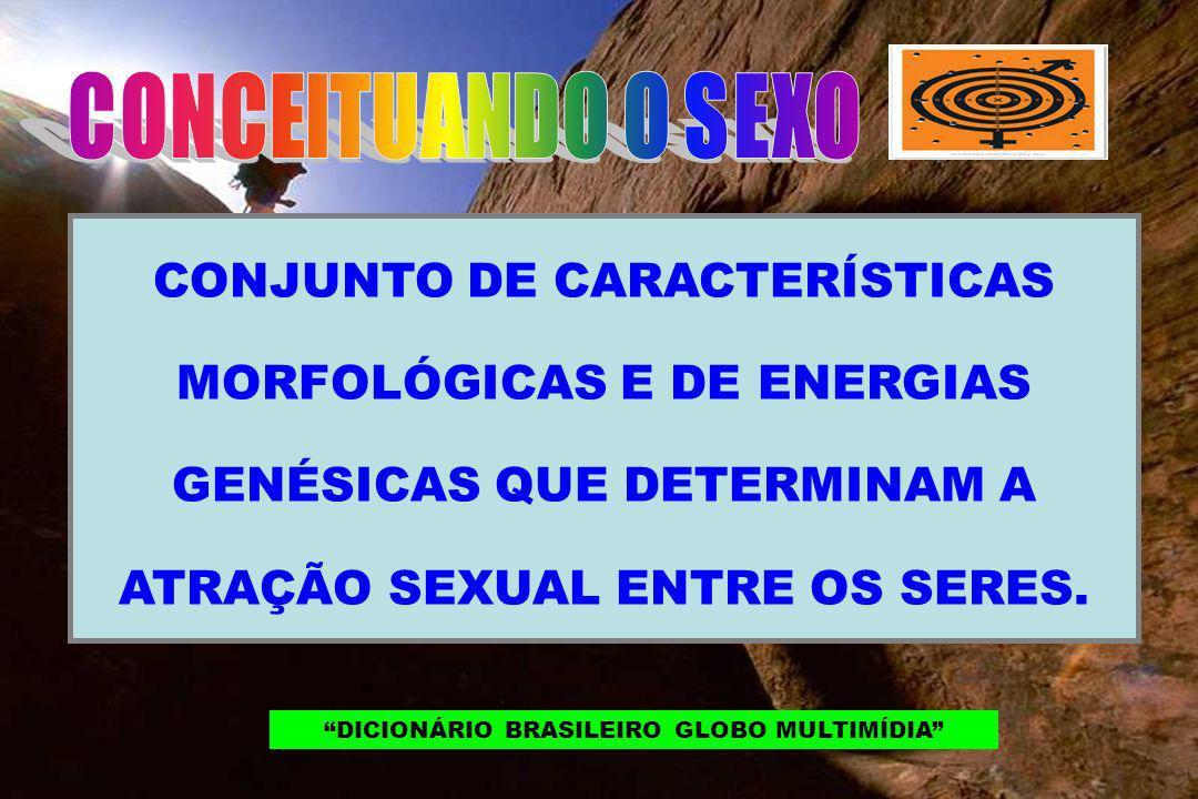 CONJUNTO DE CARACTERÍSTICAS MORFOLÓGICAS E DE ENERGIAS GENÉSICAS QUE DETERMINAM A ATRAÇÃO SEXUAL ENTRE OS SERES. DICIONÁRIO BRASILEIRO GLOBO MULTIMÍDI