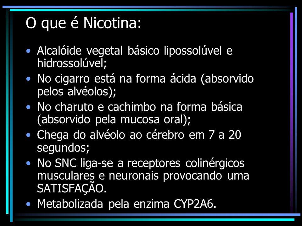 O que é Nicotina: Alcalóide vegetal básico lipossolúvel e hidrossolúvel; No cigarro está na forma ácida (absorvido pelos alvéolos); No charuto e cachi