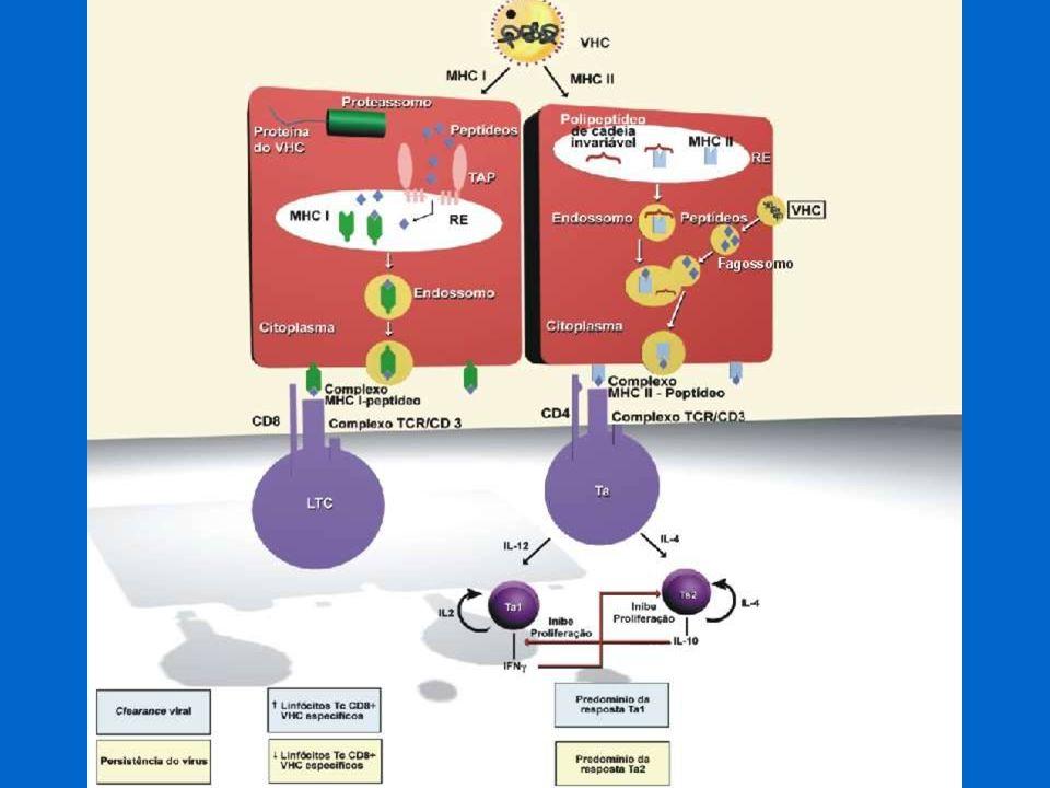 Definição >6 meses desde detección Disfunção RNA VHC+ >3 anos desde inóculo RNA VHC+ >3 anos desde inóculo RNA VHC+ Adultos Crianças Mínima ou nULA possibilidade de cura espontânea Hepatite C - cronicidade