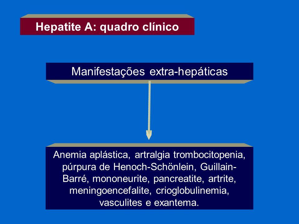 Hepatite A: quadro clínico Manifestações extra-hepáticas Anemia aplástica, artralgia trombocitopenia, púrpura de Henoch-Schönlein, Guillain- Barré, mo