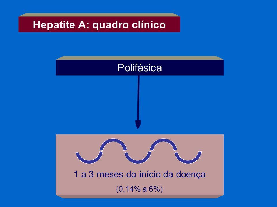 Hepatite A: quadro clínico 1 a 3 meses do início da doença (0,14% a 6%) Polifásica