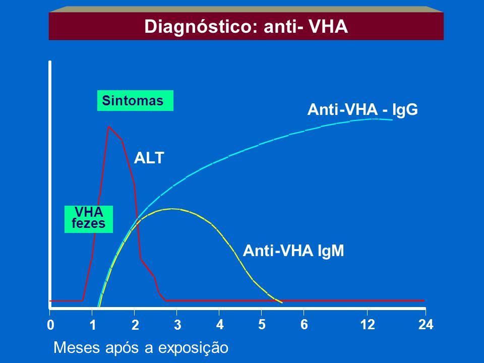 0123 4561224 Meses após a exposição Sintomas VHA fezes ALT Anti-VHA - IgG Anti-VHA IgM Diagnóstico: anti- VHA