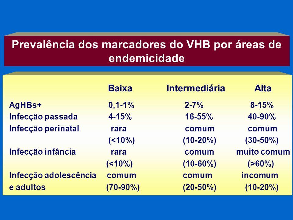Prevalência dos marcadores do VHB por áreas de endemicidade AgHBs+ 0,1-1% 2-7% 8-15% Infecção passada 4-15%16-55% 40-90% Infecção perinatal rara comum