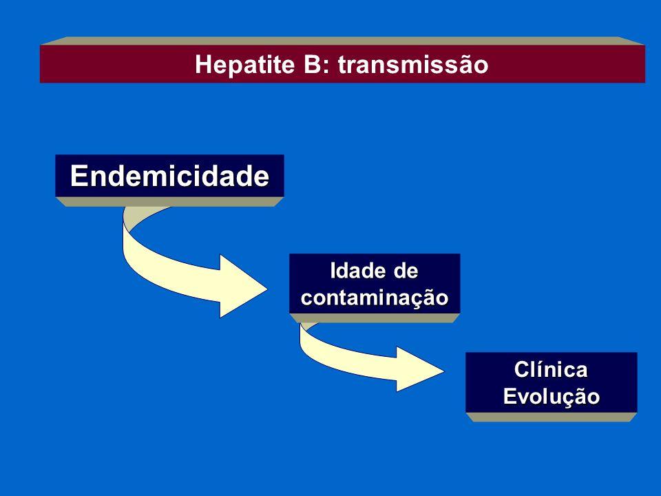 Endemicidade Idade de contaminação Hepatite B: transmissão ClínicaEvolução